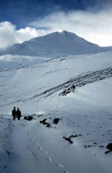 Winter walking in Glen Affric, near Shenval B&B Highlands of Scotland
