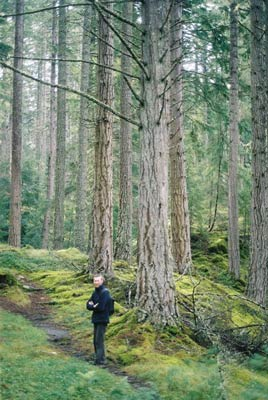 Forest walk at Plodda Falls, near Shenval B&B © Katie Medcalf